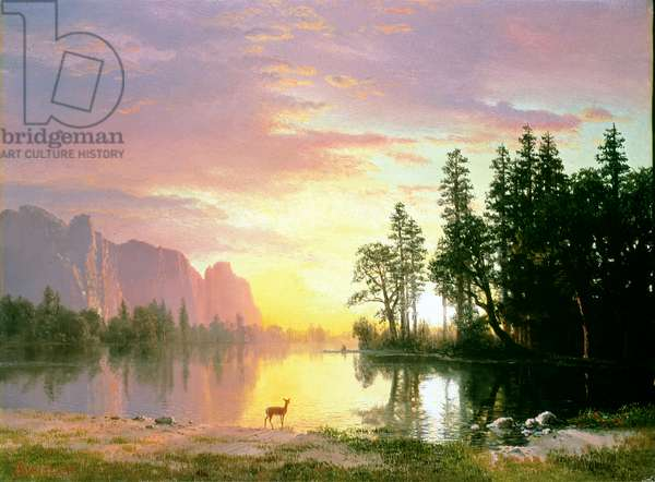 Yosemite Valley (oil on canvas)