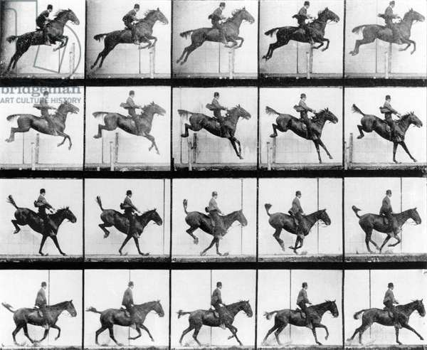 Man and Horse jumping, from 'Animals in Motion' by Muybridge, London, published 1907 (b/w photo)