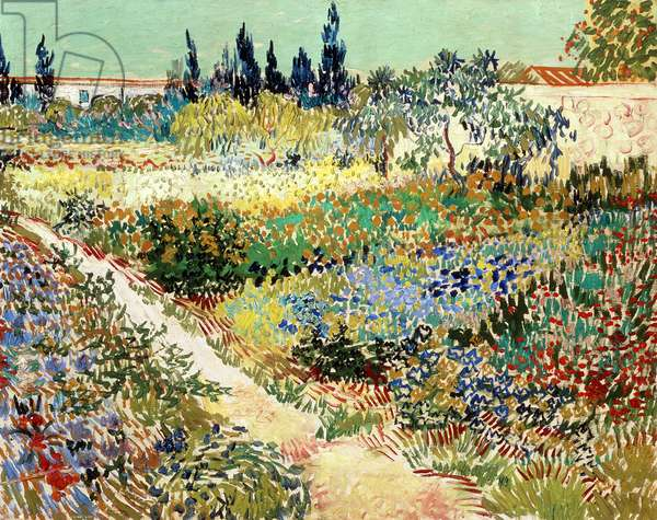 The Garden at Arles, 1888 (oil on canvas)