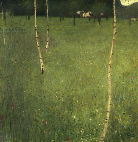 Farmhouse with Birch Trees, 1900 (oil on canvas)