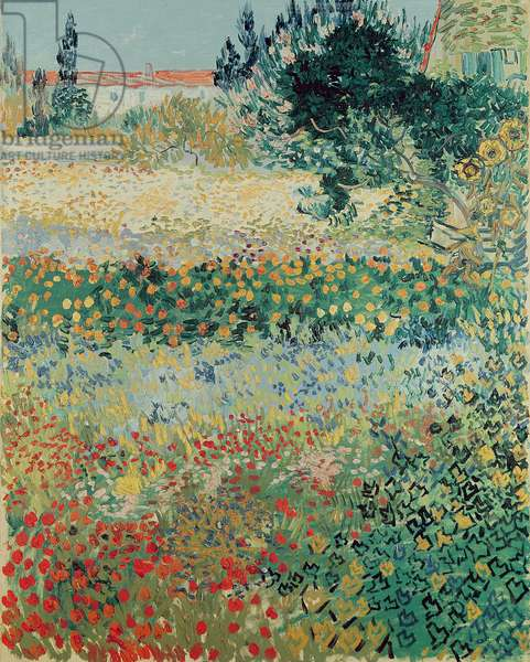 Garden in Bloom, Arles, July 1888 (oil on canvas)