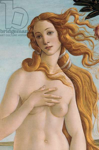Venus, detail from The Birth of Venus, c.1485 (tempera on canvas) (detail of 412)