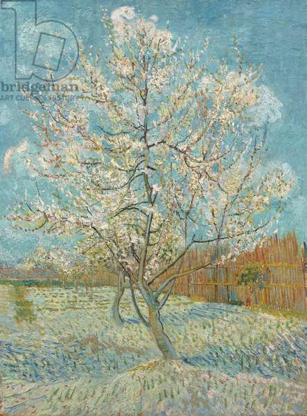 The Pink Peach Tree, 1888 (oil on canvas)