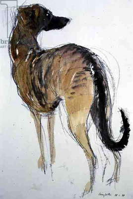 Lurcher Standing, 1988 (charcoal and w/c on paper)