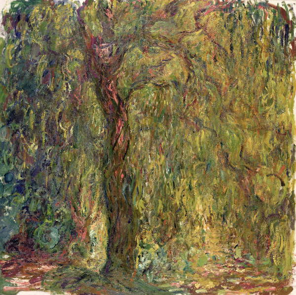 Image of a Weeping Willow, 1918-19 (oil on canvas), Monet, Claude (1840-1926) / French, Musee Marmottan Monet, Paris, France, © Bridgeman Images