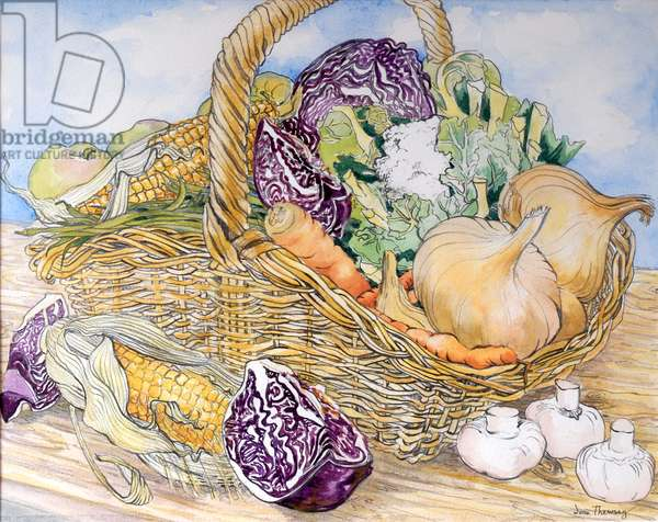 Vegetables in a Basket, 2012, (pencil and water colour on handmade paper)