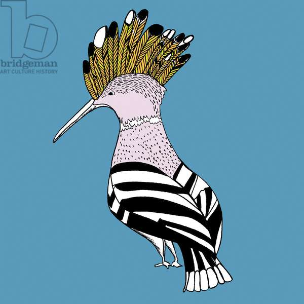 Hank Hoopoe, pen and ink, digitally coloured