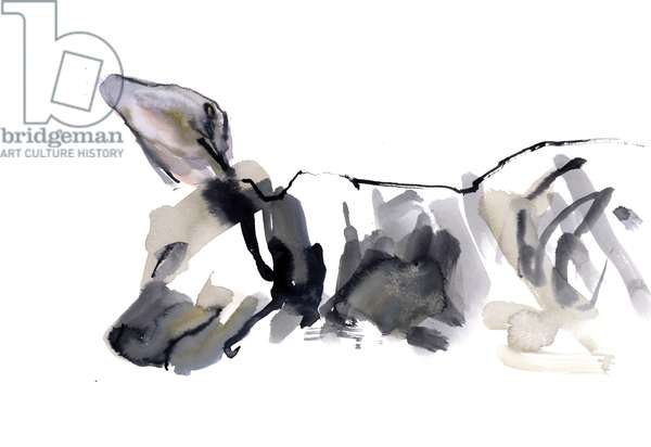 Sleeping Hyaena, 2010, (watercolour on paper)