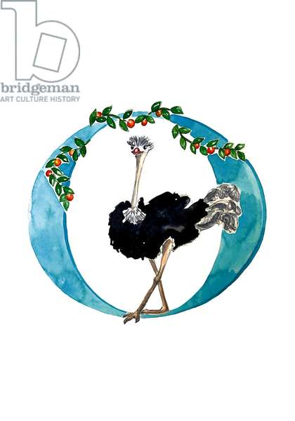 O Opulent Ostrich, 2019, (watercolour and ink)