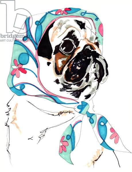 Pug In Pucci, 2012 (pen and ink on paper)
