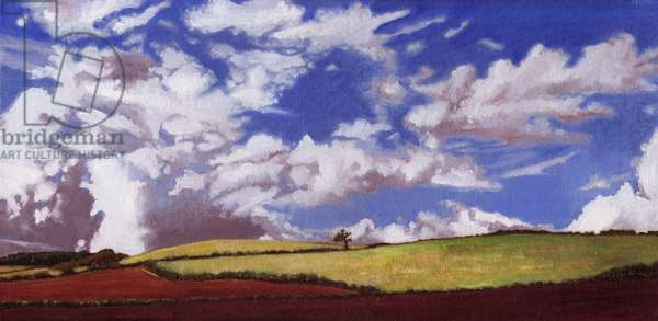 Lone tree, 2012, (oil on canvas)