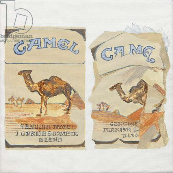 Camel Cigarette packs