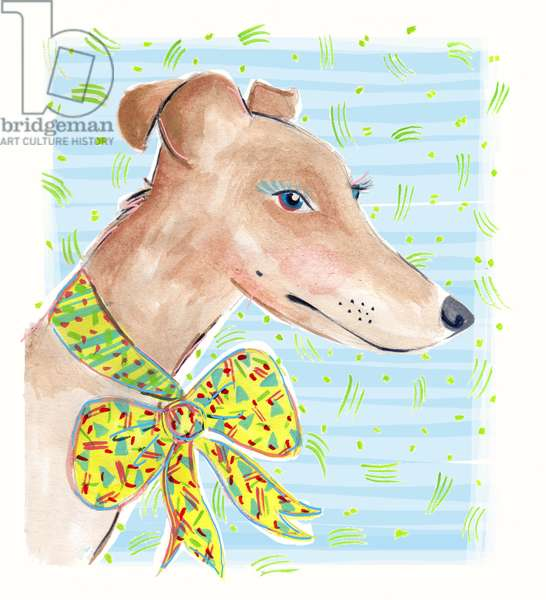 Greyhound, 2015 (watercolour on paper)