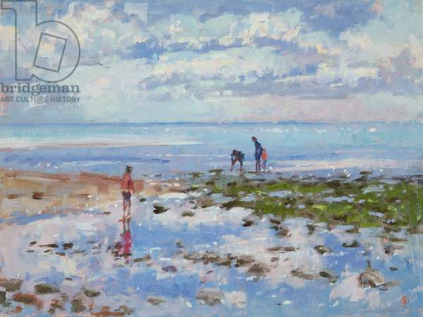 Low Tide Charmouth, 2012 (oil on canvas)