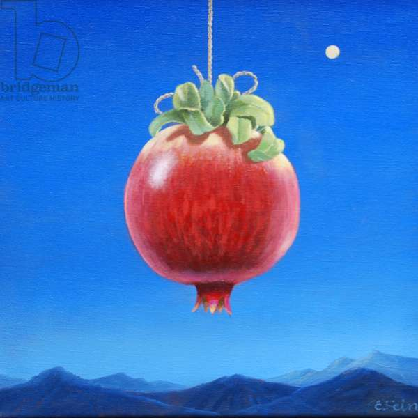 HANGING POMEGRANATE