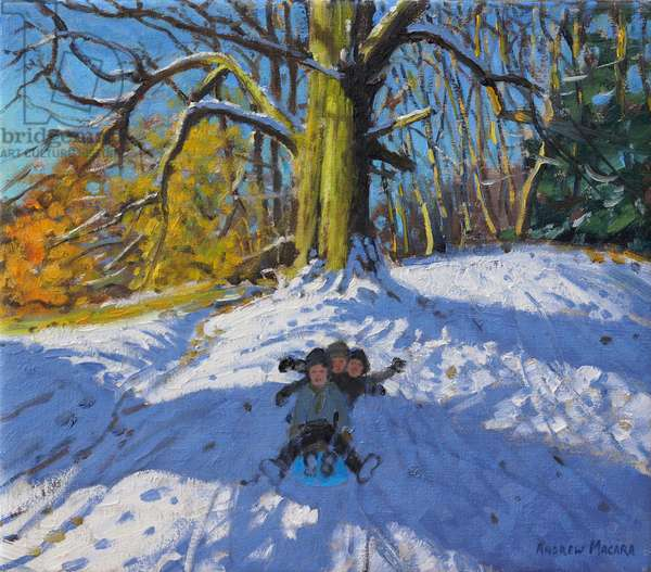 Three on a sledge,Allestree Park Derby .2014,(oil on canvas)