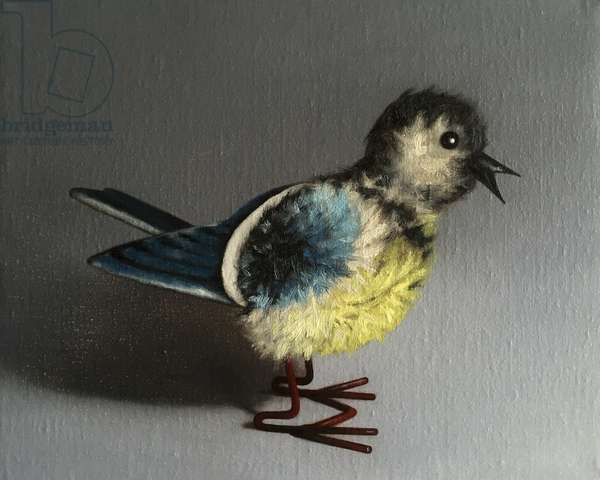 Blue Tit, 2016, (oil on canvas)