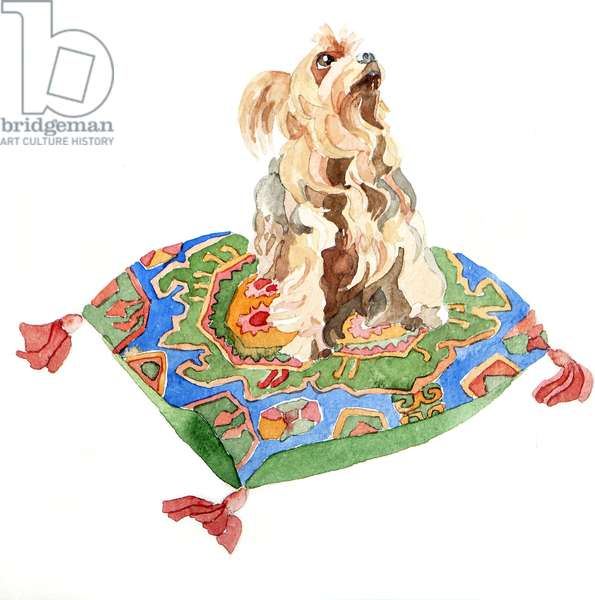 Yorkshire terrier, 2012, (watercolour)