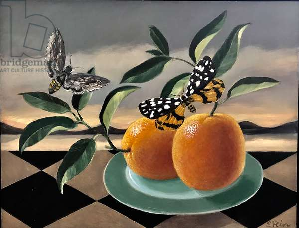 Moths and oranges