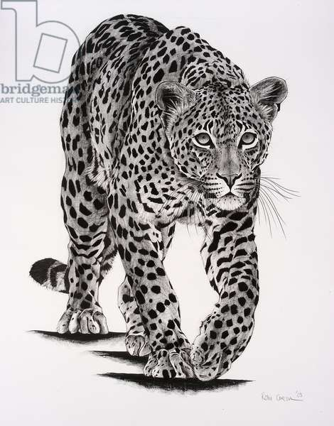 Prowling, 2004, (Charcoal on paper)