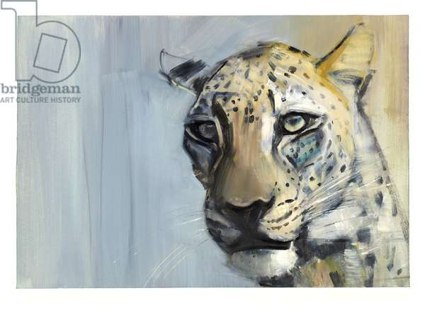 Predator (Arabian Leopard), 2009 (oil on paper)