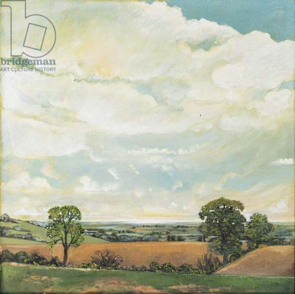 Downland Sky, 2001 (oil on canvas)