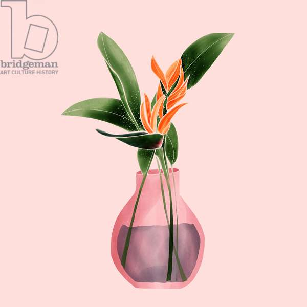Bird of Paradise in a Vase, 2019, digital