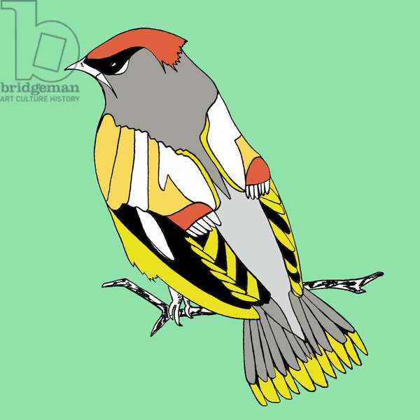 Winnie Waxwing, pen and ink, digitally coloured