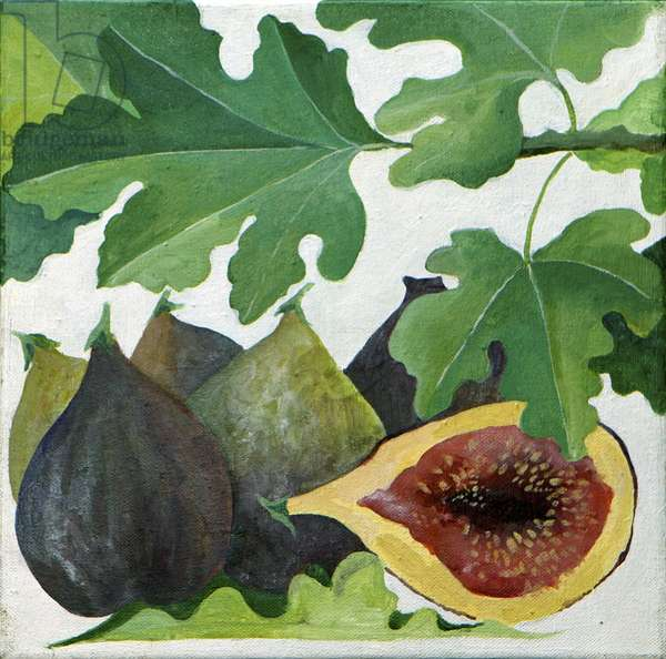 Figs, 2013, (acrylic on canvas)