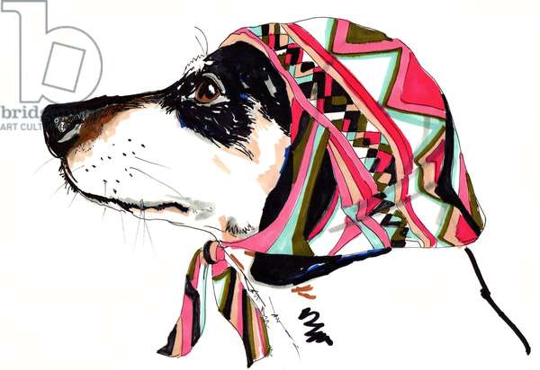 Pooch In Pucci, 2012 (pen and ink on paper)