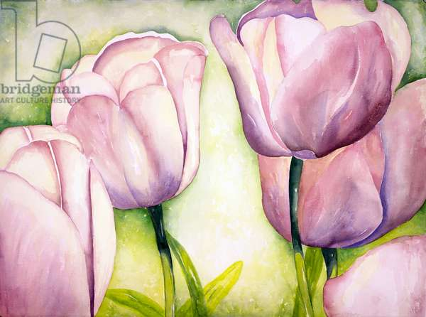 Lavender Tulips, 2006 (watercolor)