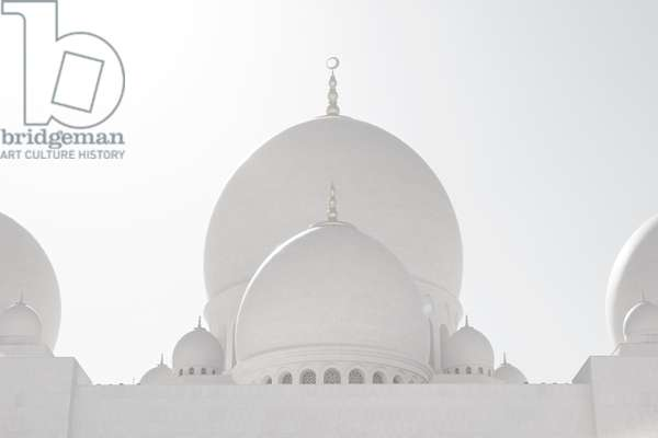 Sheikh Zayed Grand Mosque landscape#1