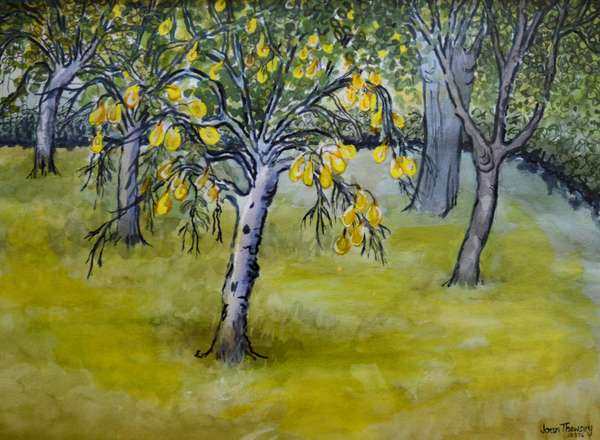 The Little Pear Tree,2005 (watercolour)