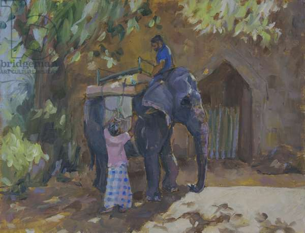 Elephant,Sri Lanka,2015, (oil on board)