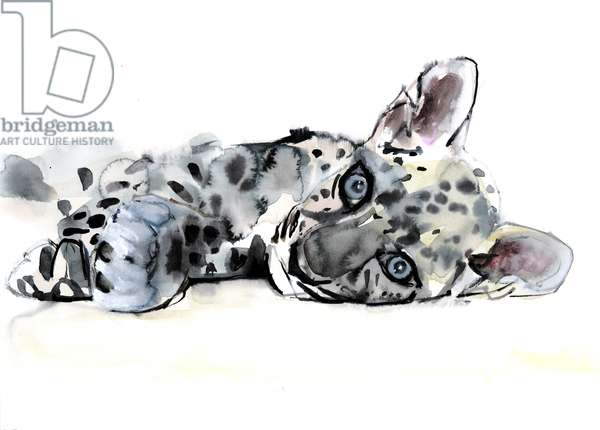 Arabian Leopard Cub, 2008 (w/c on paper)