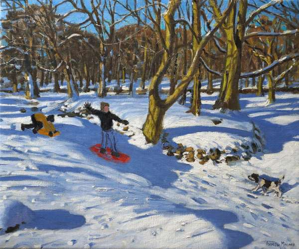Red sledge,Lomberdale Hall,Derbyshire,2014,(oil on canvas)