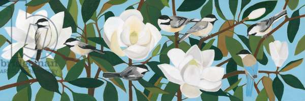 Chickadees & Azure-Winged Magpie