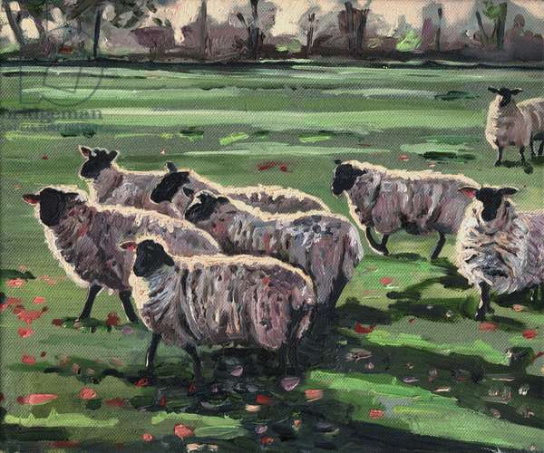Curious Flock II, 2009, (oil on canvas)