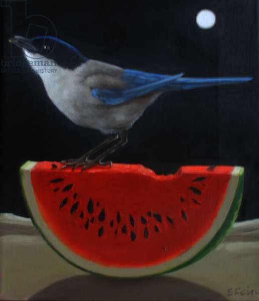 MAGPIE ON A WATERMELON