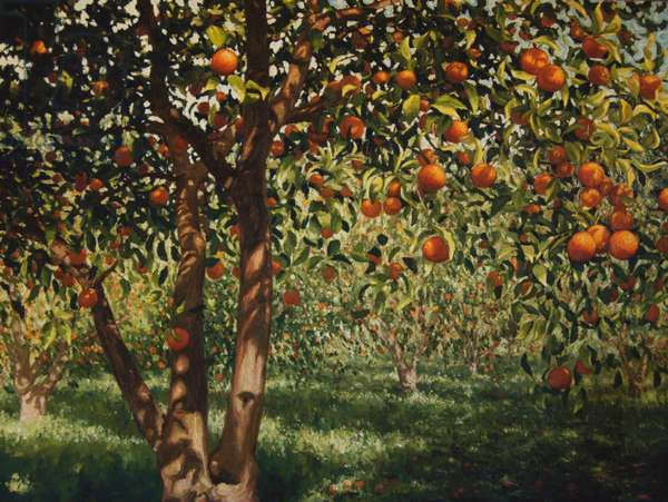 Silence under the oranges II, 2012, oil on canvas