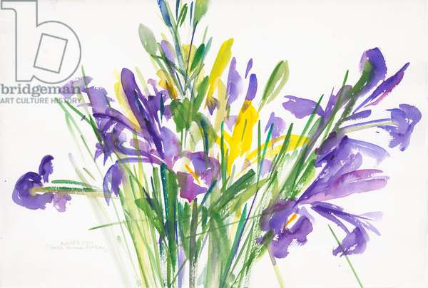 Irises, 1999, (watercolour on paper)