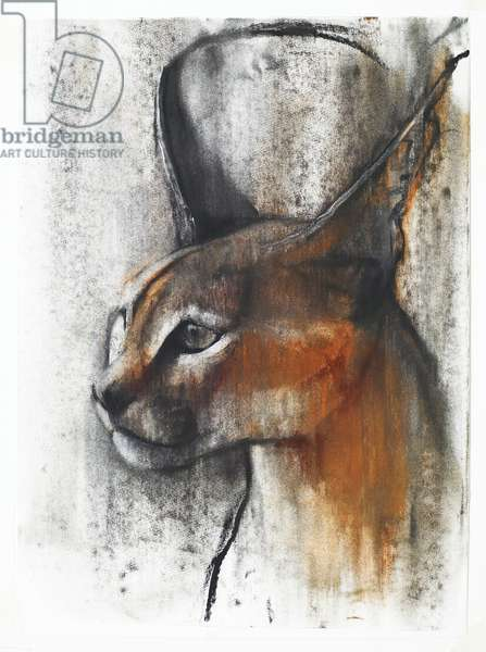 Egyptian (Arabian Caracal), 2009 (conte & charcoal on paper)