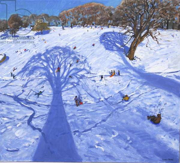 Chatsworth, winter tree shadows, 2013, (oil on canvas)