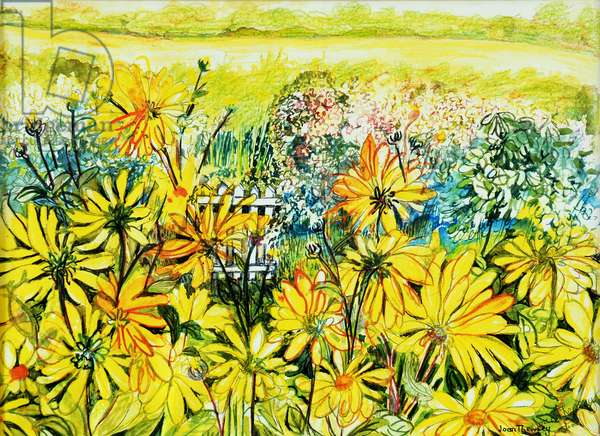 Cottage Gate seen through Sun Daisies,2005,(water colour)