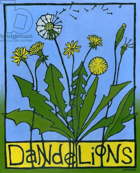 Dandelions, 2008, (oil on illustration board)