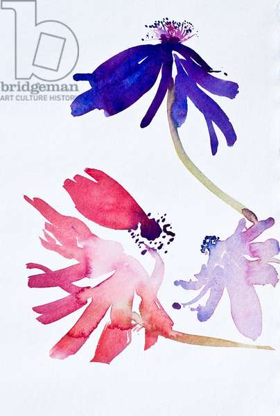Anemones II 2010, watercolour