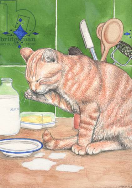 Ginger Cat With Milk, 1995 (watercolour and pencil)