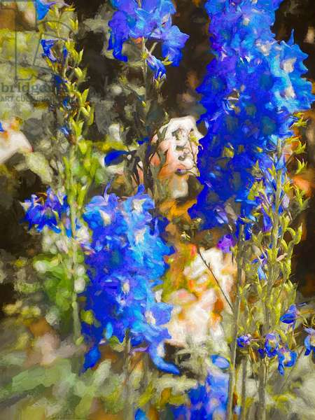 Blue Delphiniums, 2019, (painting)