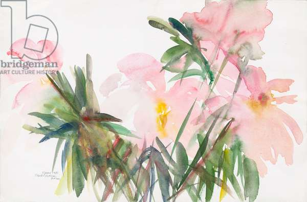 Peonies, 1987, (watercolour on paper)