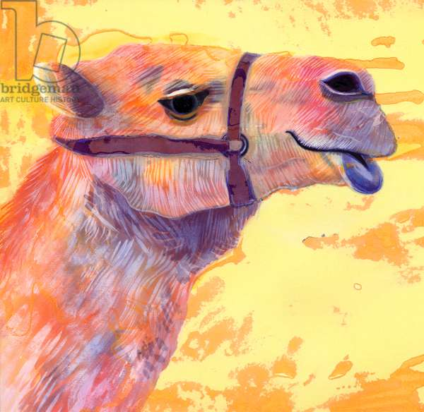 Camel, 1994, (ink and gouache)